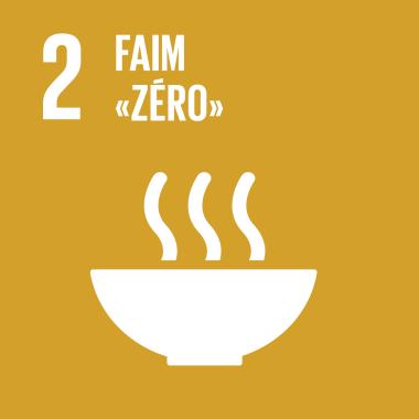 F_SDG goals_icons-individual-rgb-02