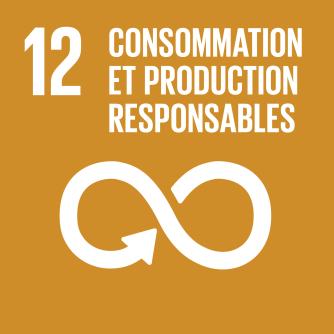F_SDG goals_icons-individual-rgb-12